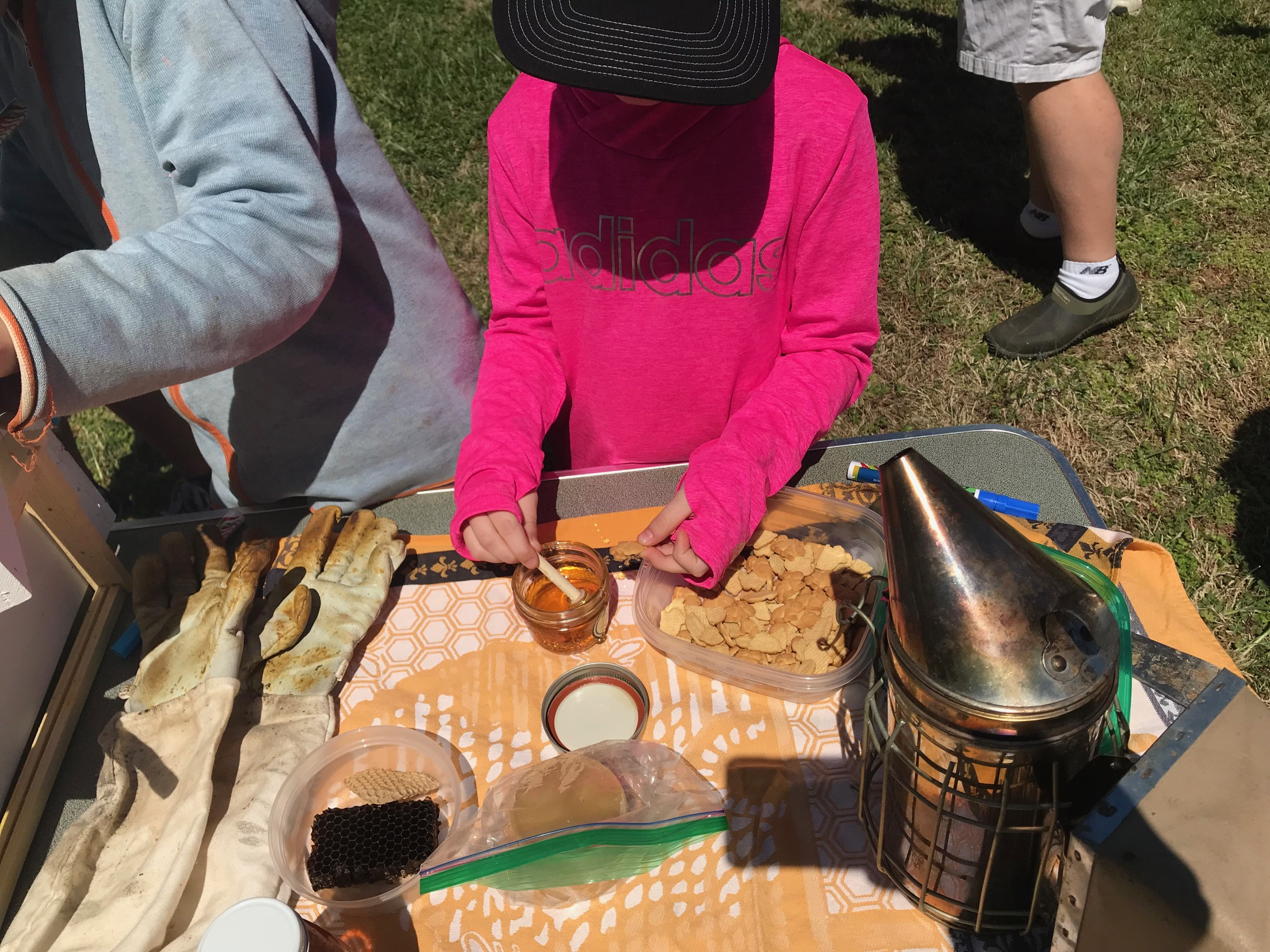 Sampling local honey